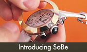 Introducing SoBe